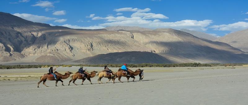 North Yatra_Ladakh